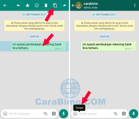 Copy Paste Percakapan WhatsApp