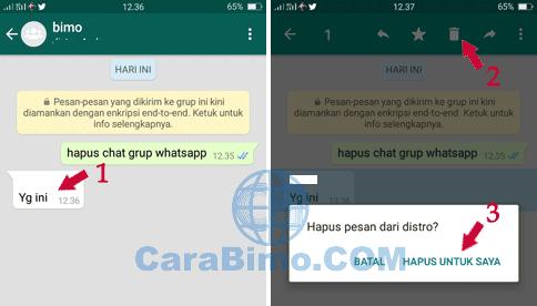 Bagaimana Cara Menghapus Gambar dan Chat di Grup WhatsApp?