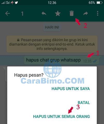 Cara Hapus Chat di Grup WhatsApp Yang Salah Kirim