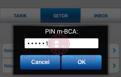 pin m-BCA