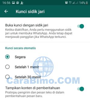 kapan pengunci WhatsApp diaktifkan