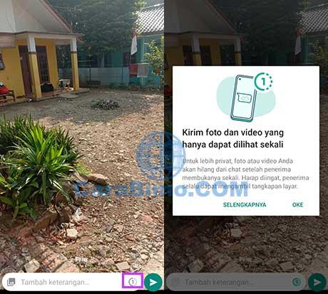 Foto WhatsApp Terhapus Otomatis
